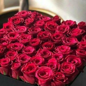 My Valentine's Special Flower
